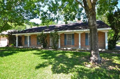 Friendswood Single Family Home For Sale: 202 Dover Lane