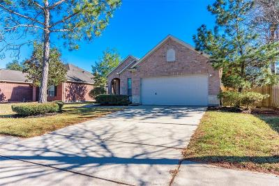 League City Single Family Home For Sale: 5129 Winterwood Drive
