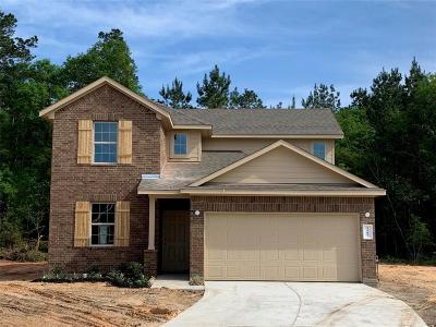 Conroe Single Family Home For Sale: 2307 Fallen Willow Court