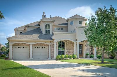 Single Family Home For Sale: 3821 Treasure Island Drive