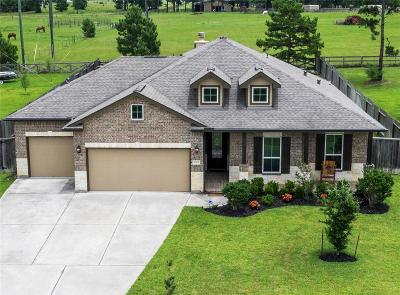 Magnolia Single Family Home For Sale: 18815 Maverick Ranch Road E