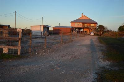 Galveston Single Family Home For Sale: 2943 S Sonny Lane