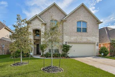 Pearland Single Family Home For Sale: 13509 Mystic Arbor Lane