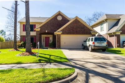 Sugar Land Single Family Home For Sale: 2315 Burkdale Drive