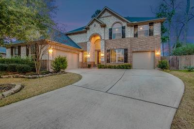 Humble Single Family Home For Sale: 17327 Cordell Falls Court