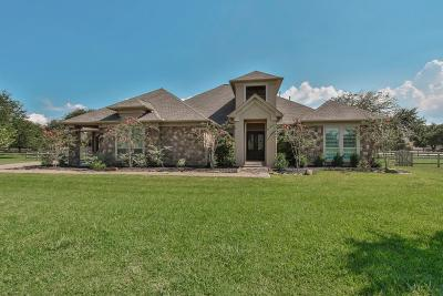 Fulshear Single Family Home For Sale: 32635 Waterworth Court