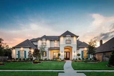 Spring Single Family Home For Sale: 31710 E Vista Lake Lane