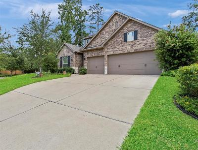 Spring Single Family Home For Sale: 31626 Sutter Springs Lane