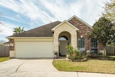 League City Single Family Home For Sale: 2963 Stone Spring Lane