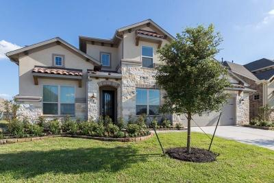 Tomball Single Family Home For Sale: 13619 Nearpoint Lane