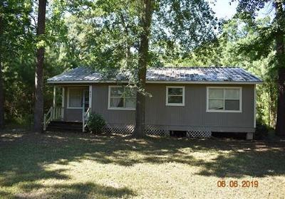 Liberty County Single Family Home For Sale: 847 County Road 343
