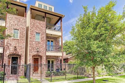 Houston Single Family Home For Sale: 419 Oxford Street