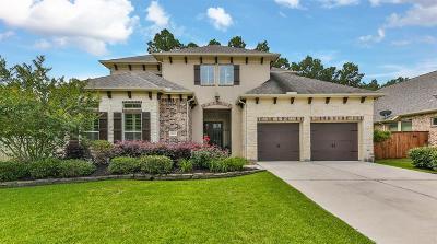 Porter Single Family Home Option Pending: 19922 Cullen Ridge Drive