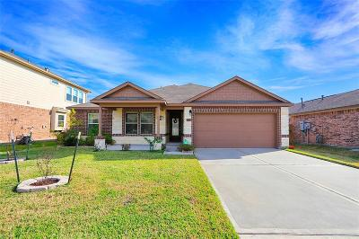 Manvel Single Family Home For Sale: 20 Coconut Palms Court
