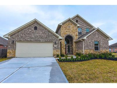 Southern Trails Single Family Home For Sale: 12407 Pepper Creek Lane