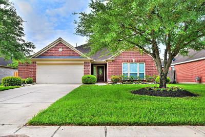Houston Single Family Home For Sale: 16715 Red Falls Circle