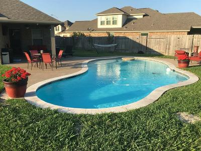 Pearland Single Family Home For Sale: 2703 Kenton Hills Court