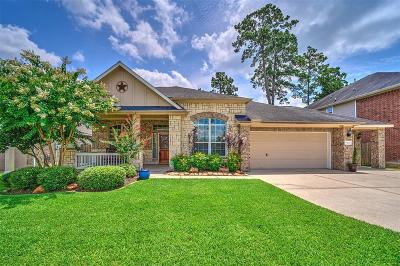 Spring Single Family Home For Sale: 25222 Piney Heights Lane