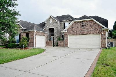 League City Single Family Home For Sale: 2502 Brittany Lakes Drive