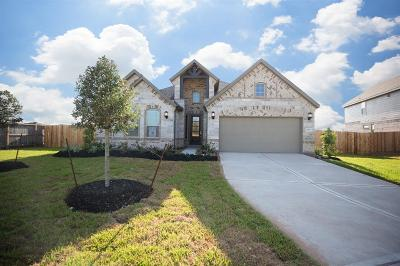 Rosenberg Single Family Home For Sale: 2203 Pickford Terrace Lane