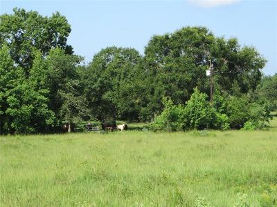 Montgomery Farm & Ranch For Sale: Fm 149 North