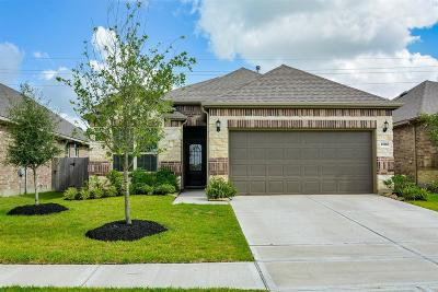 Katy Single Family Home For Sale: 24602 Royal Pike Drive Drive