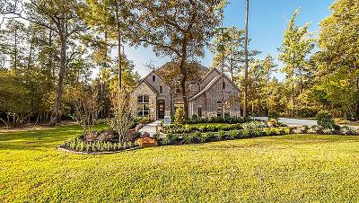 Conroe Single Family Home For Sale: 11013 Shadow View Drive