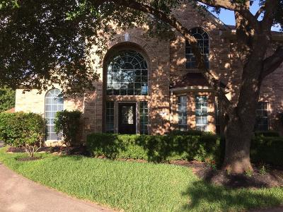 Fort Bend County Single Family Home For Sale: 8230 Falling Water Court