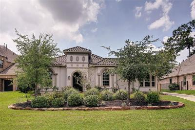 The Woodlands Single Family Home For Sale: 7 Valley Cottage