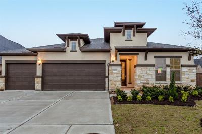 Katy Single Family Home For Sale: 6906 Crane Court