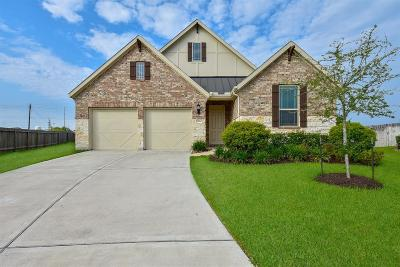 Pearland Single Family Home For Sale: 2804 Parkside Village Court