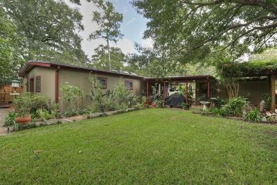 Houston Single Family Home For Sale: 12930 Butterfly Lane