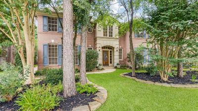 The Woodlands Single Family Home For Sale: 15 Bank Birch Place