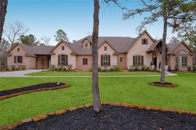 Magnolia Single Family Home For Sale: 37802 Meadowwood Green