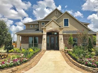 Texas City Single Family Home For Sale: 12820 Narrow Cove Drive