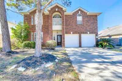Katy Single Family Home For Sale: 5435 Newbear Drive