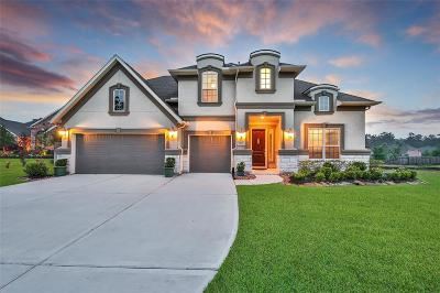 Conroe Single Family Home For Sale: 2182 Graystone Hills Drive