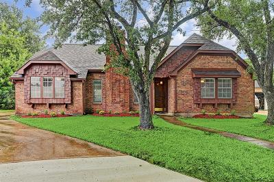 Houston Single Family Home For Sale: 10507 Kirkvale Drive