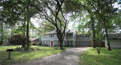 Houston Single Family Home For Sale: 6511 Point Clear Drive