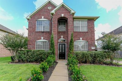 Sugar Land Single Family Home For Sale: 16734 Village View Trail