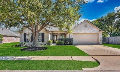 Houston Single Family Home For Sale: 16423 Northumberland Drive