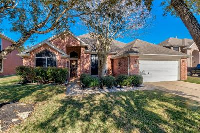 Houston Single Family Home For Sale: 16418 Redcrest Drive