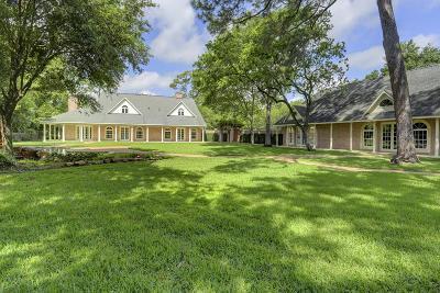 Houston Single Family Home For Sale: 29 W Rivercrest Drive