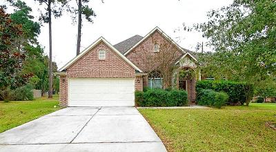 Montgomery Single Family Home For Sale: 3010 Lake Island Drive