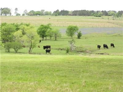 La Grange Farm & Ranch For Sale: 7750 S Us Hwy 77