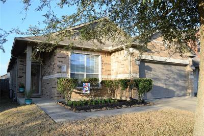 Manvel Single Family Home For Sale: 28 Supiro Drive