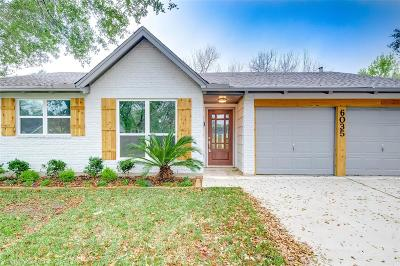Houston Single Family Home For Sale: 6035 Bankside Drive