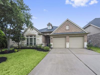 Harris County Single Family Home For Sale: 15827 Juniper Shores Drive