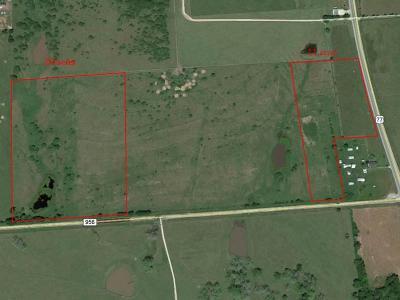 Farm & Ranch For Sale: 10 Hwy 956