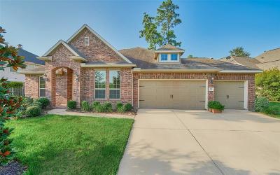 Spring Single Family Home For Sale: 106 E Canyon Wren Circle